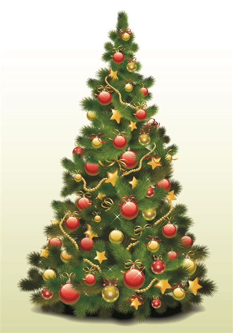 free christmas trees for low income families top 28 free trees for low income families free trees for low income