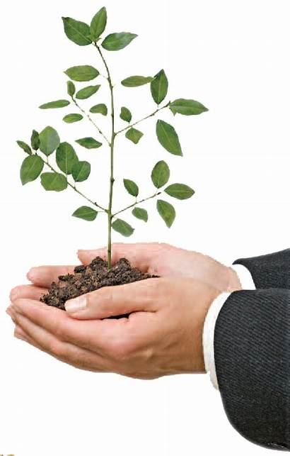 Hand Value Values Plant Core Copy Order