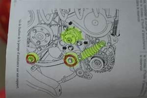 Courroie Alternateur Clio 2 : bruit courroie d 39 accessoire sur megane 1 9d renault megane auto evasion forum auto ~ Medecine-chirurgie-esthetiques.com Avis de Voitures