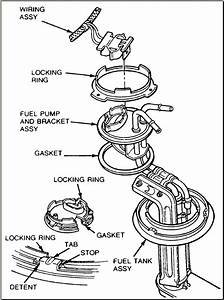 2001 Mustang Fuel System Diagram   32 Wiring Diagram Images