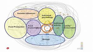 Designing a 'whole systems approach' to prevent and tackle ...