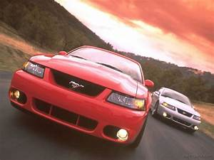 2001 Ford Mustang Svt Cobra Specifications  Pictures  Prices
