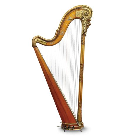 what is a l harp what is a harp harp facts for kids dk find out