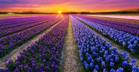 Download Colorful Landscapes Landscape Channel
