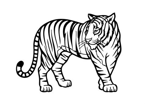 zoo animal coloring pages    clipartmag