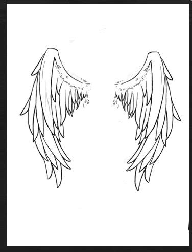 1000+ images about angel wings on Pinterest | Wings, Baby angel wings and Angel