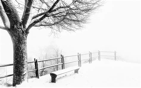 foggy cold weather wallpapers foggy cold weather stock