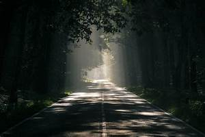 無料写真 太陽の光が降り注ぐ道路の風景 パブリックドメインq 著作権フリー写真 イラスト