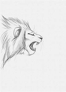 Lion Roar Line Drawing | www.imgkid.com - The Image Kid ...