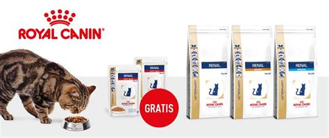 royal canin renal feline sonderaktion