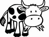 Cow Coloring Pages Grass Farm Animals Funny Animal Eating Printable Outline Cows Cartoon Sheets Adult Games Sheet Valentines Coloringgames Zoo sketch template