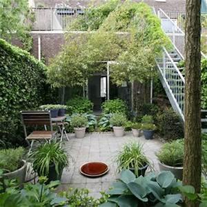 naturlicher sichtschutz ideen 389 bilder roomidocom With französischer balkon mit baum als sichtschutz für kleinen garten