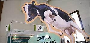 BBC NEWS | UK | Magazine | China drinks its milk