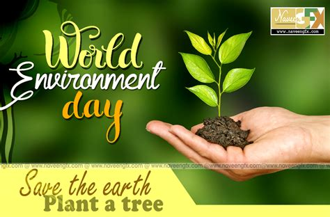 june  world environment day quotes posters wallpapers