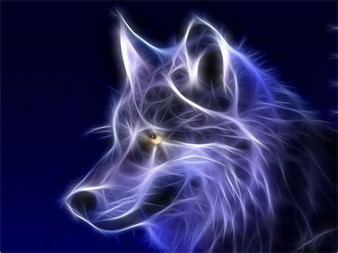 Cool Animal Wallpaper Light Wolf - an effect that you must see 10steps sg