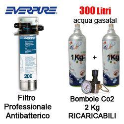 gasatore acqua rubinetto depuratore acqua refrigeratore gasatore everpure fredda