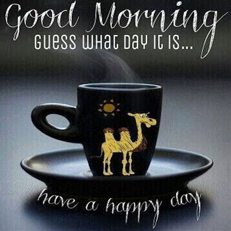 good morning guess  day     happy day