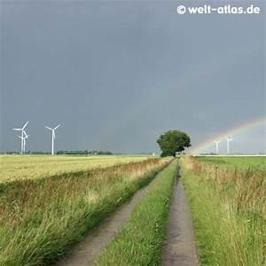 Baum Fällen Zeitraum Schleswig Holstein : foto dithmarscher landschaft mit regenbogen welt ~ Whattoseeinmadrid.com Haus und Dekorationen