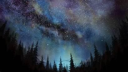 Sky Night Stars Trees Aurora Wallpapers Borealis