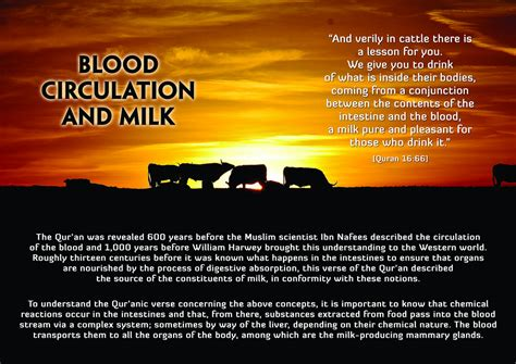 the quran and the modern science picture quran modern science blood circulation milk navedz