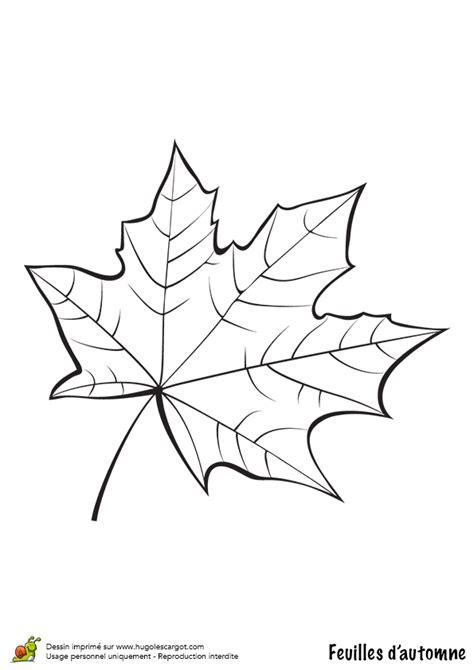 cuisine blanc et noyer coloriage feuille de platane en automne