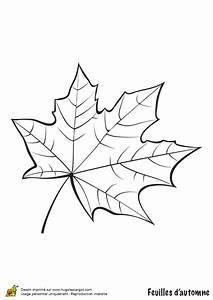 Feuilles D Automne à Imprimer : coloriage feuille de platane en automne ~ Nature-et-papiers.com Idées de Décoration