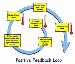 Positive Feedback Loop | Car Interior Design