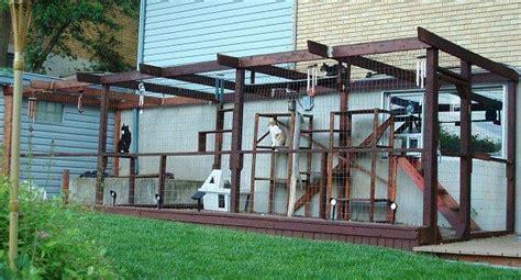 outdoor cat run outdoor cat enclosure outdoor cat enclosures