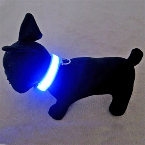 light for collar best collars with lights webnuggetz