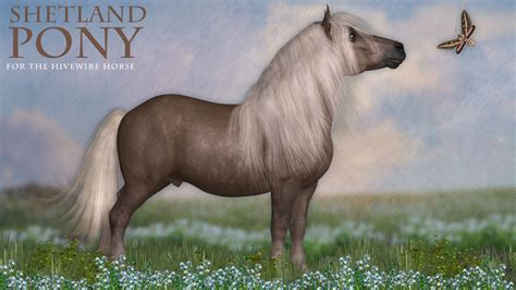 pony shetland horse hivewire breeds stack 3d value hivewire3d cwrw them