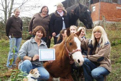 college caball berufsausbildung  pferd  bayern