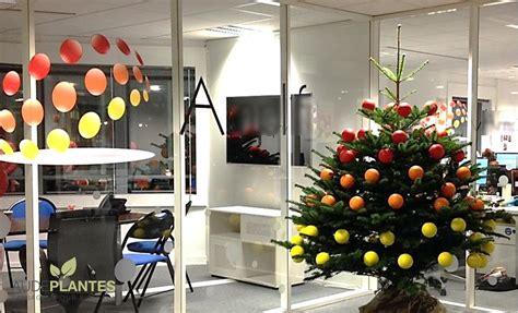 decoration de noel pour entreprise d 233 cors de no 235 l aude plantes la nature s invite au bureau