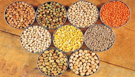 Pulses » LMJ International Limited » LMJ International is well known star trading house in India