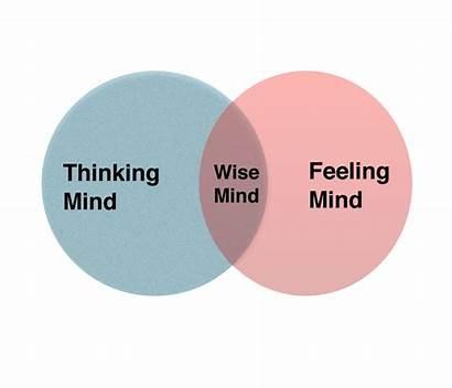 Wise Mind Mindfulness Dbt Jonathan Anderson Circles