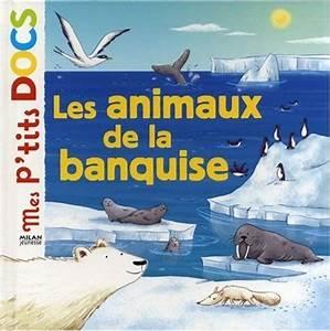 Pingouin Sur La Banquise : 131 best images about grand nord esquimau banquise on pinterest coloring pages preschool ~ Melissatoandfro.com Idées de Décoration