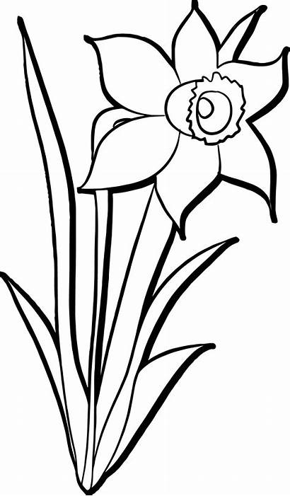 Coloring April Flowers Showers Bring Sheets Wecoloringpage
