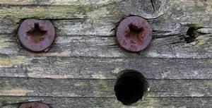 Alte Farbe Von Holz Entfernen : schrauben aus holz entfernen heimwerker tipps ~ Frokenaadalensverden.com Haus und Dekorationen