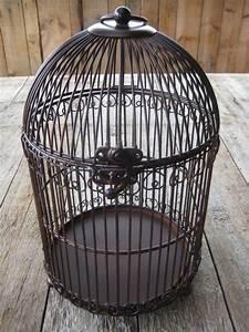 Cage Oiseau Deco : cage a oiseaux ancienne en fer forge 13 cage oiseau deco occasion u2013 visuel 6 ~ Teatrodelosmanantiales.com Idées de Décoration