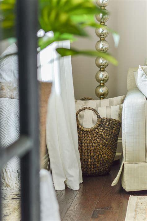 Living Room Decor Plant