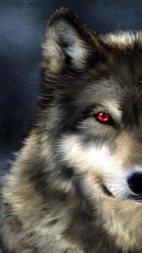 black white hunter red eyes grey wolf wild wallpaper