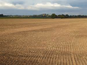 Ploughed and tilled field © Philip Halling :: Geograph ...