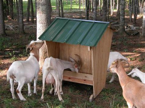 goat mineral feeder goat hay feeder plans car interior design