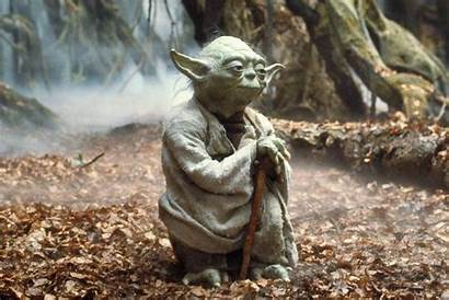Yoda Quotes Wars Maestros Force Asia Five