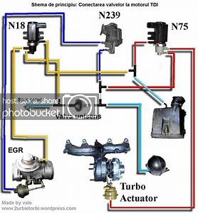 Tdi Turbo And Egr Vacuum System Diagram