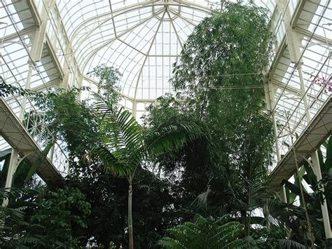 botanical gardens dublin dublin tourism tourist