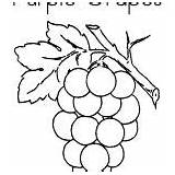 Coloring Pages Grapes Purple sketch template