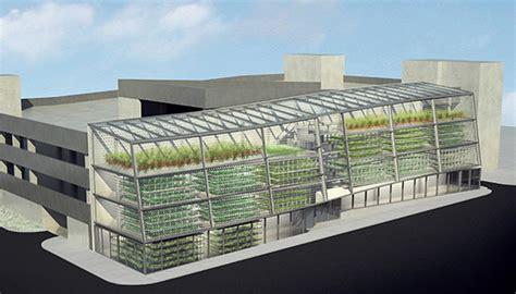thomas bateman urban city management tlc the tree and landscape company using aeroponics to
