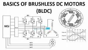 Basics Of Brushless Dc Motors  Bldc Motors