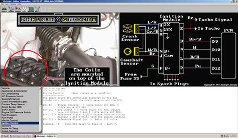 Go Light Wiring Diagram by Go Light Wiring Diagram 24h Schemes