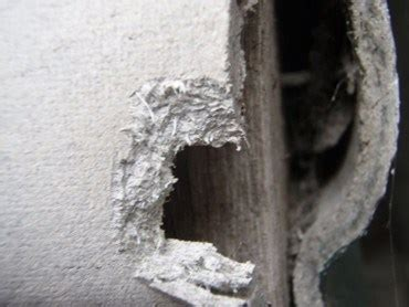 asbestos testing  sydney houses architecture  design